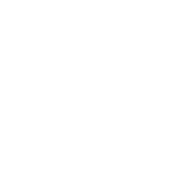 #1 Rated Product